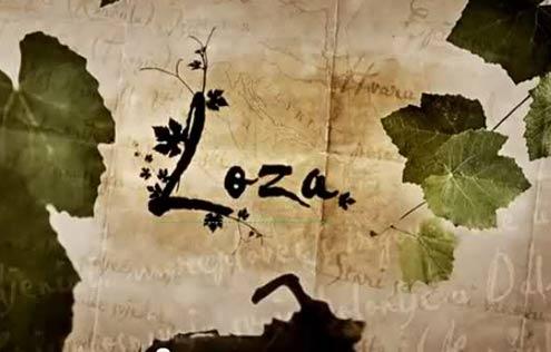 loza-v.jpg
